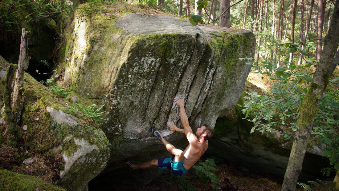 Sam Hunter powering up Twist and Shout (7a+) on a summer morning visit to Long Boyau in the forest of Fontainebleau
