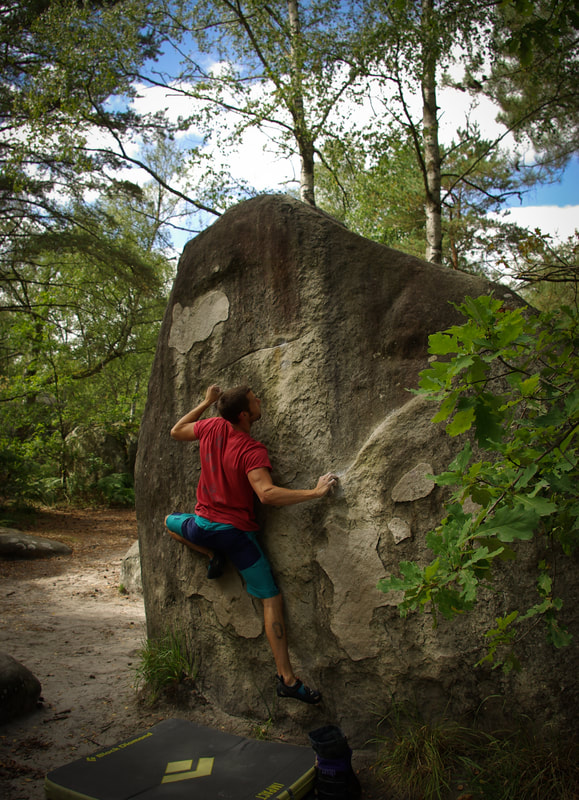 Sam climbing Red no.11 at Canche aux Merciers. Classic Fontainebleau bouldering