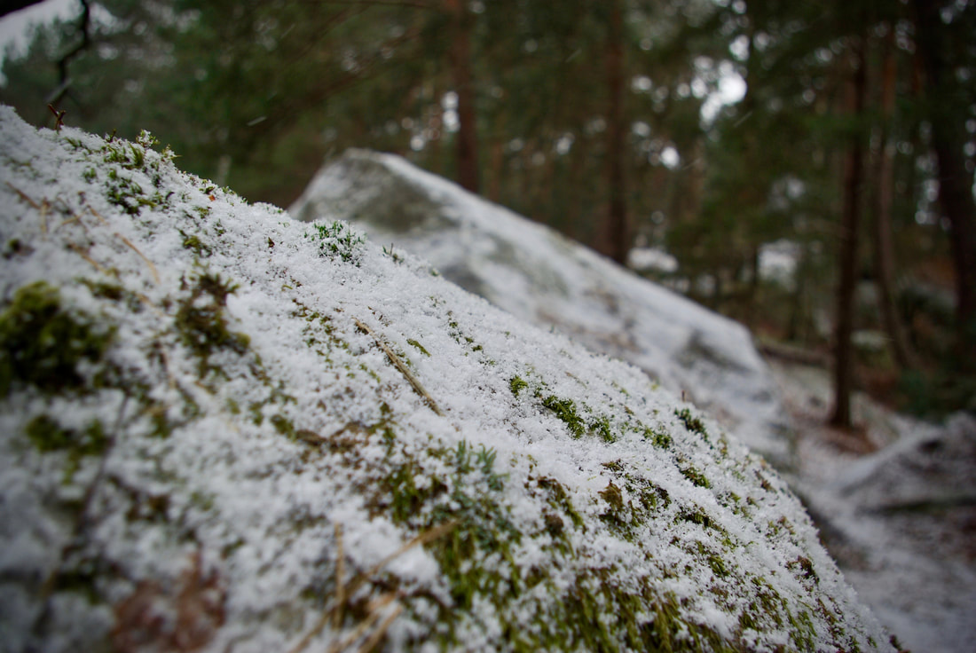 Snow on the boulders of Fontainebleau Forest