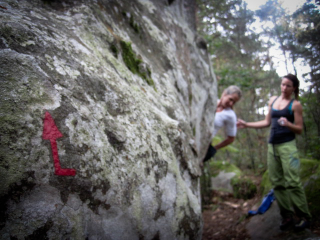 Red circuit bouldering in Fontainebleau