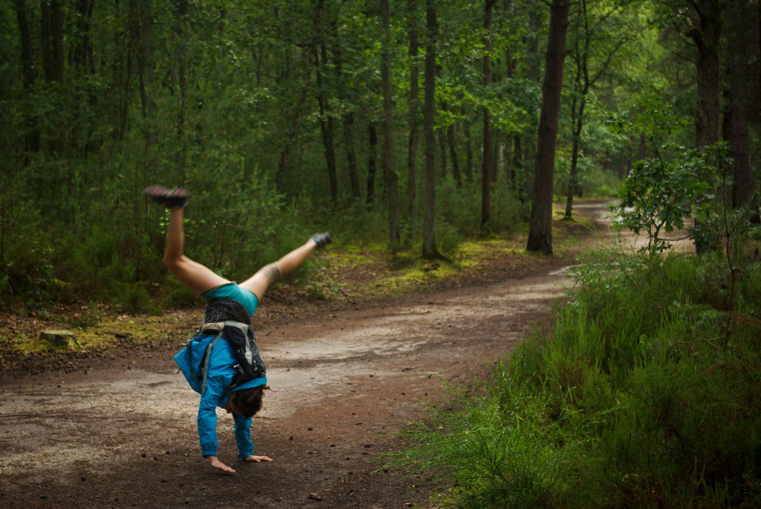 Cartwheel in Fontainebleau forest