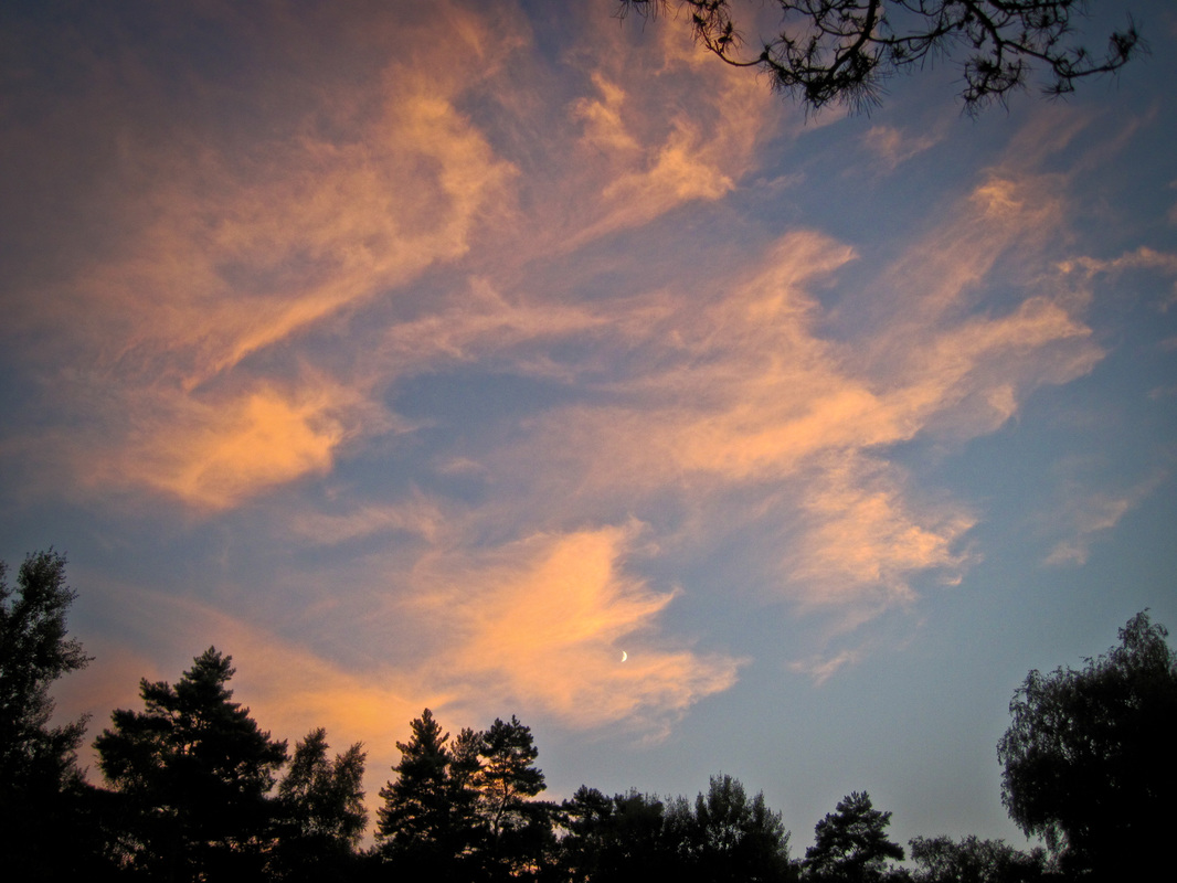 A sunset illuminates clouds above Franchard Isatis car park, Fontainebleau Forest