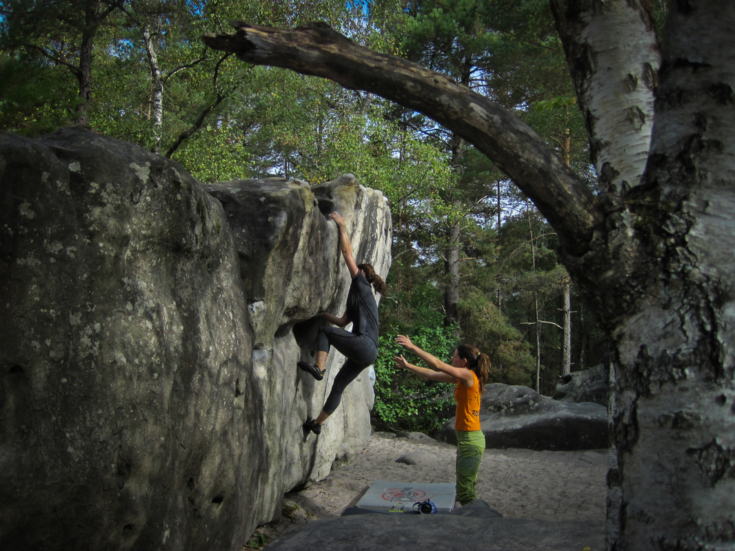 Fontainebleau bouldering trips with Rock and Sun