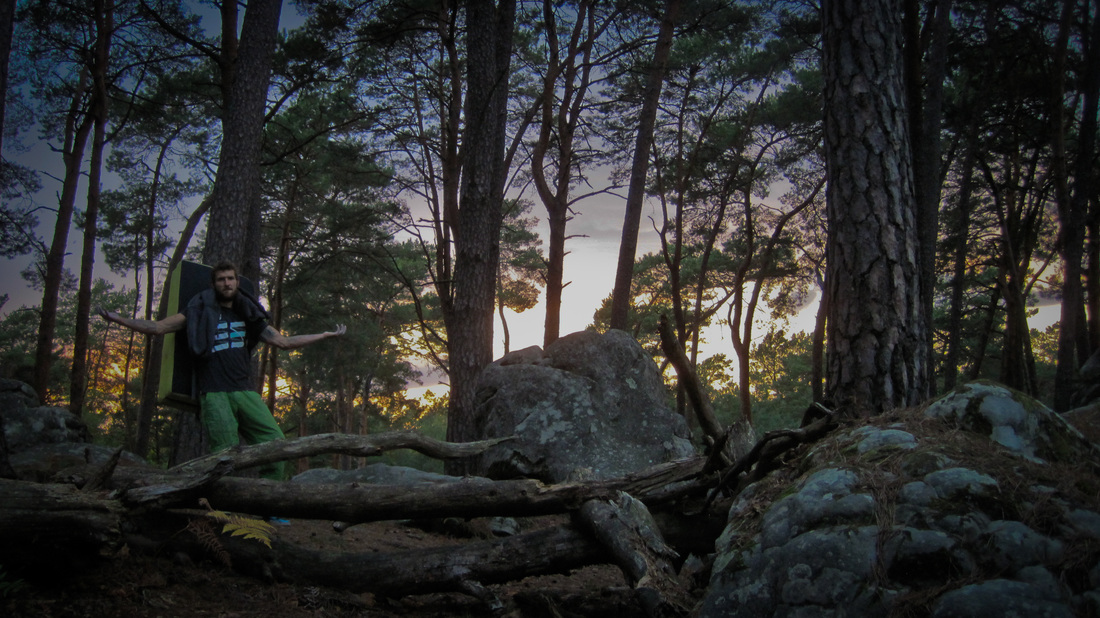 Last light in the Fontainebleau forest.